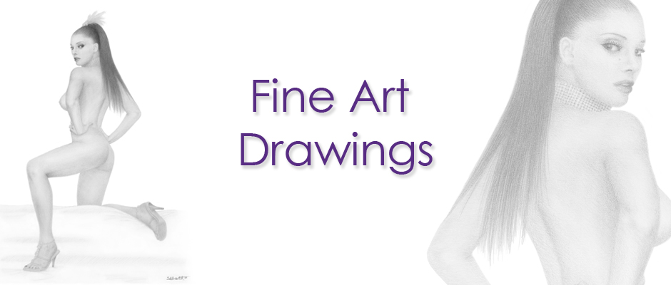 Sarah Scotchman_Fine Art Drawings_ Banner