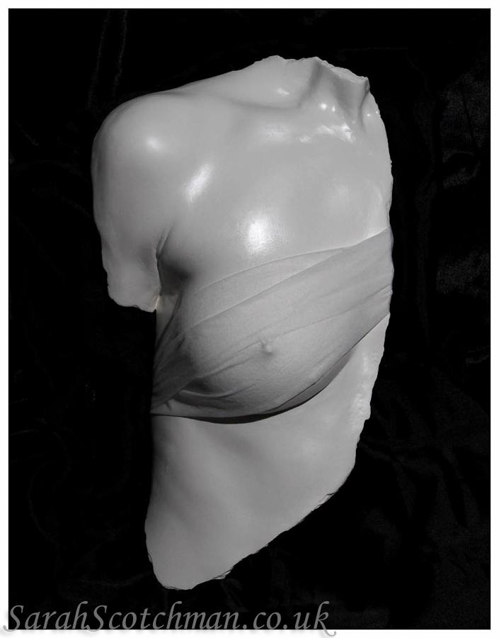 Sarah Scotchman Roman Bust Plaster Life Cast with a Satin Finish & Drapes